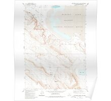 USGS Topo Map Oregon Southwest Harney Lake 281576 1980 24000 Poster