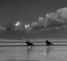 Horses in a storm by Dave Hayward