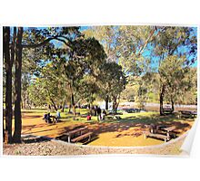 Picnic area beside the fast flowing Swan River Poster