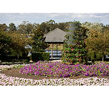 View To The Pagoda - Hunter Valley Gardens Series Photographic Print