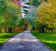 Road to the Garden in Spring by Monica M. Scanlan