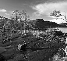 Loch Maree  by William  Copestake