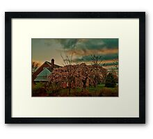 Spring in the Suburb Framed Print