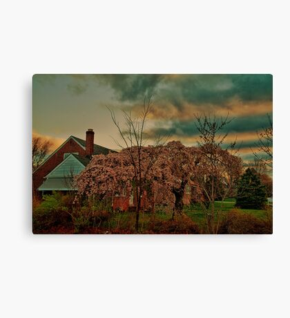 Spring in the Suburb Canvas Print
