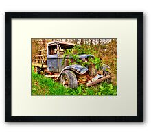 rusting in the  weeds Framed Print