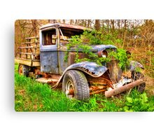 rusting in the  weeds Canvas Print