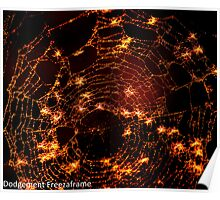 Spiders web with Dandylion seeds in it. Poster