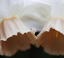 Spring Duet by Olga Zvereva