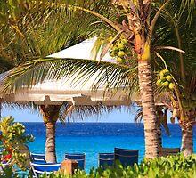 Tropical Island View Grand Turk Caribbean Island by Simon Hills