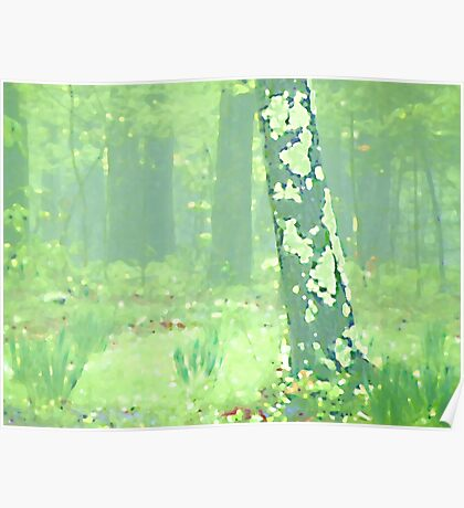 Van Gogh Spring Forest Poster