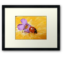 We are colorful combined... Framed Print