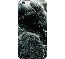 The Hidden Land – Remembering Pompeii iPhone Case/Skin