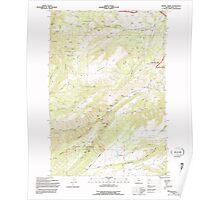 USGS Topo Map Oregon Brown Creek 279156 1994 24000 Poster