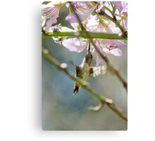 Matthew 10:33 Undeniable Faith; Neff Park, La Mirada, CA USA Lei Hedger Photography  Canvas Print