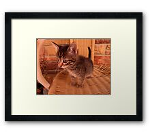 Wait what was that ? Framed Print