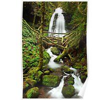 Oregon water falls-Bridge Creek falls  Poster