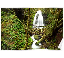 Oregon waterfall-Bridge creek falls H Poster