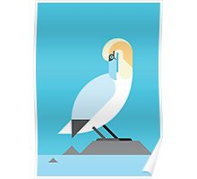 Gannet geometrical vector illustration Poster