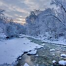 Mimico Creek After Snow by Marilyn Cornwell