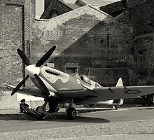 In the Shadow of a Spitfire  by larry flewers