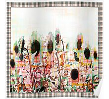 Burberry Daisies Poster