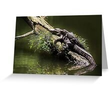 Mama and Baby Alligator Greeting Card