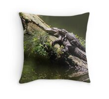 Mama and Baby Alligator Throw Pillow