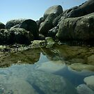 Rockpool by Dean Messenger