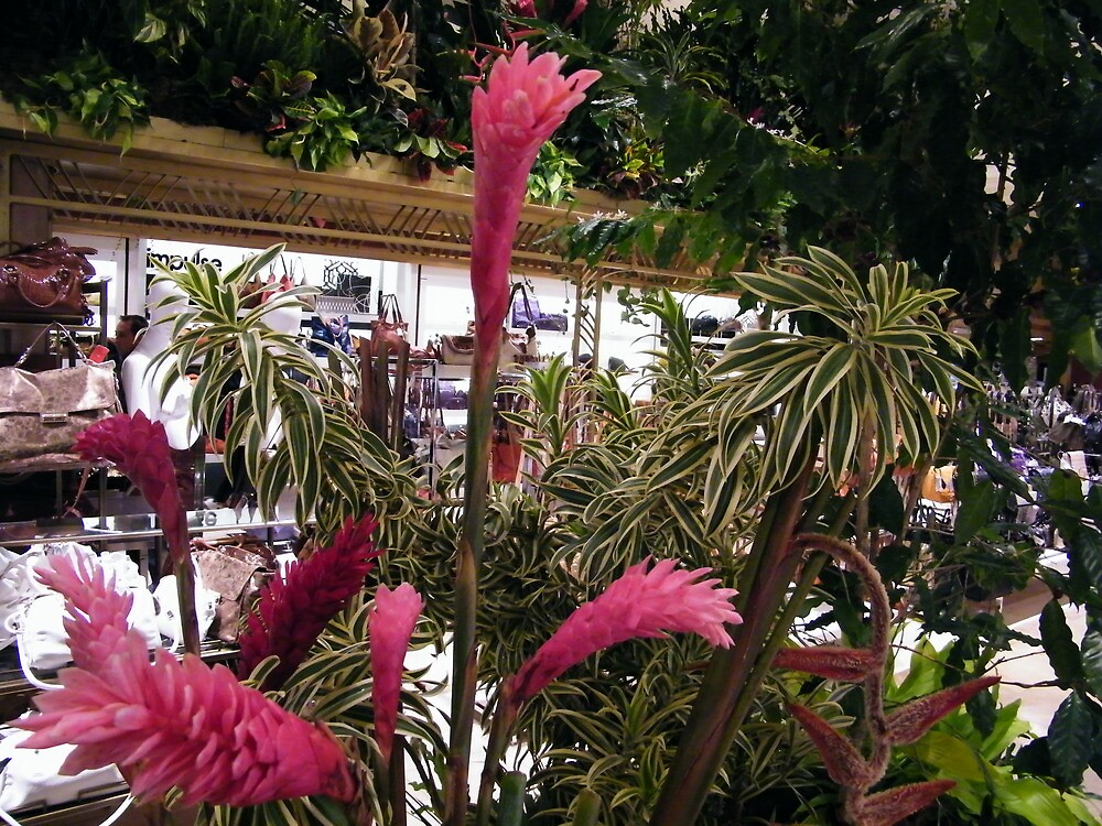 Macy's Flower Show, New York by lenspiro