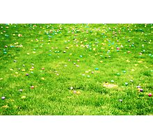 an Easter ocean of eggs!  Photographic Print