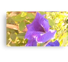 Anchan Boutique flowers Canvas Print