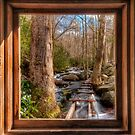 Tub Mill -  Window by JHRphotoART