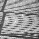 Fence Shadow by Joan Wild