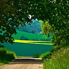 Natural tree framed  view of landscape in France by Marita Toftgard