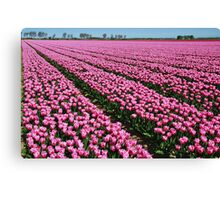 Here they still flowered....... Canvas Print