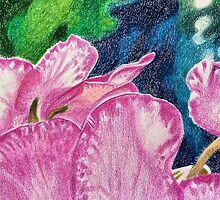 Pink cyclamen by ArtbyInese2015