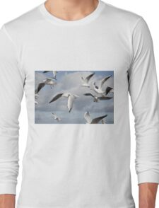 Flying Seagulls Long Sleeve T-Shirt