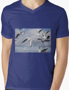 Flying Seagulls Mens V-Neck T-Shirt