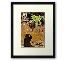 NATURAL HISTORY ~ A SHADOW OF ITS FORMER SELF! Framed Print