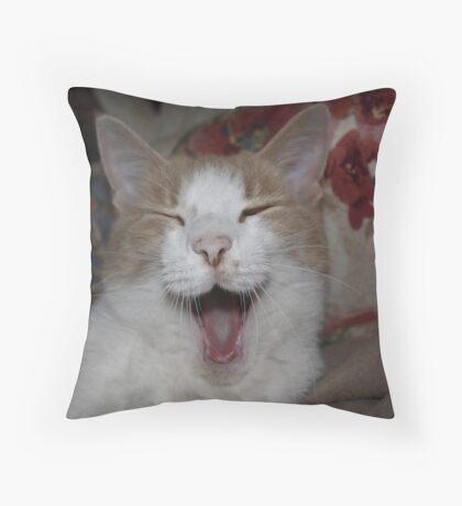 BORING !!!! Throw Pillow