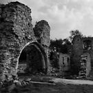 Grace Dieu Priory 2 by Mike Topley