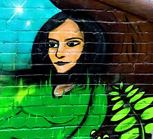 She Lives On a Wall in Macdonaldtown by Janie. D
