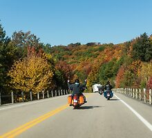 Joyful Autumn Ride - Bikers Know the Best Roads by Georgia Mizuleva