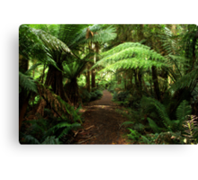 Into the Rain Forest Canvas Print