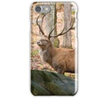Red Deer Bull iPhone Case/Skin
