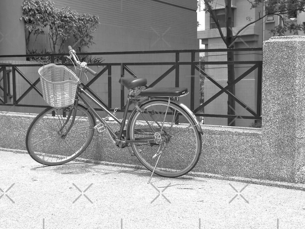 Bicycle Transport by eq29