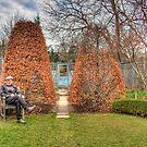 The Gardener by Marilyn Cornwell