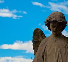 Looking Down - Greenwood Cemetery, NY by Boots86