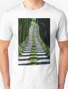 Cypress Avenue, Lago Montepulciano, Tuscany, Italy T-Shirt