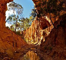 Golden Gully. by Warren  Patten